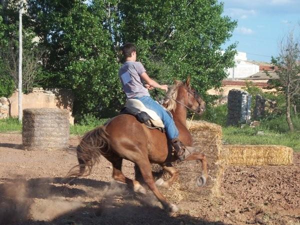 caballos1.jpg