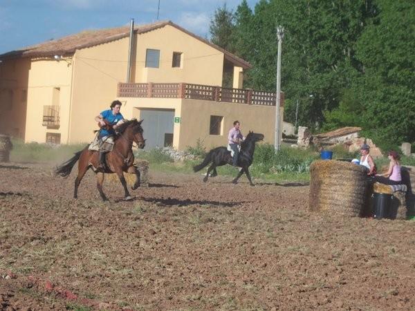 caballos2.jpg